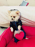Комбинезон костюм для собаки Забава