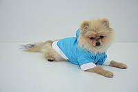 Курточка для собаки Сильвер, фото 1