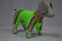Комбинезон для собаки на синтепоне Заря теплый, фото 1