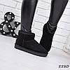 Угги женские UGG натуральная замша короткие 5580, зимняя обувь