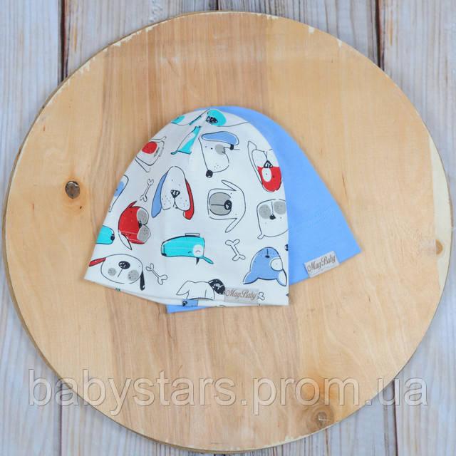 Набор трикотажных шапок, Собачки