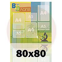 Стенд для кабинета биологии 80х80, карманы А4-3 шт, карманы А5 -3 шт