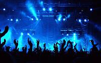 Организация вечеринок, концертов, фестивалей, выставок, чемпионатов