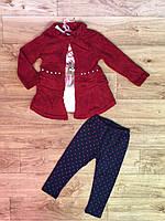 Набор-тройка для девочек оптом, Grace, 1-5 лет., арт. G82699, фото 2