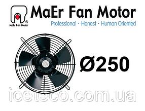Вентилятор осевой 2E-250-B (YDWF67L25P2-300P-250 B) MaEr Fan Motor