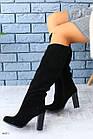 Женские замшевые сапоги на каблуке