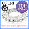 Светодиодная лента 5050-60 IP65, герметичная, белая