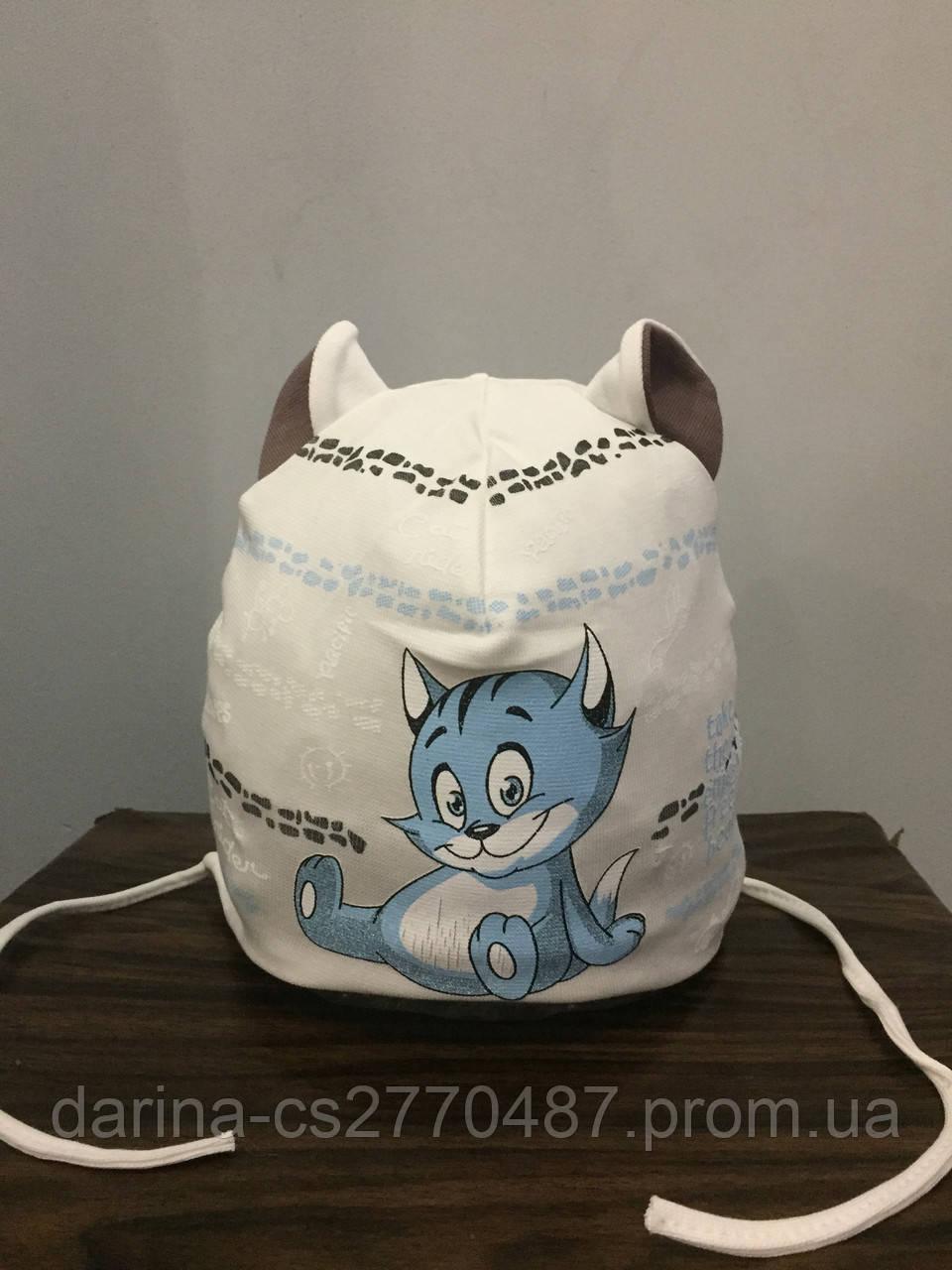 Трикотажная шапка с котом для мальчика