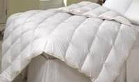 Одеяло пуховое LUXURY ELITE 95% пух 5% перо 200х220
