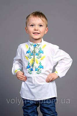 """Вышиванка для мальчика """" Волошка, колос"""" ( арт. BX1-427.0.7 )"""