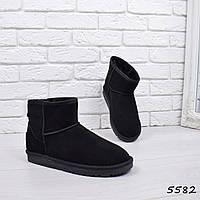 Угги мужские  натуральная замша  5582, зимняя обувь