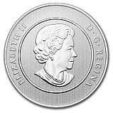 20 долларов 2013 Канада - Санта Клаус. Серебро. UNC, фото 2