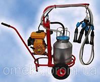 Доильный аппарат Березка бензиновая (стаканы из нержавеющей стали)