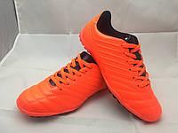 Сороконожки оранжевые