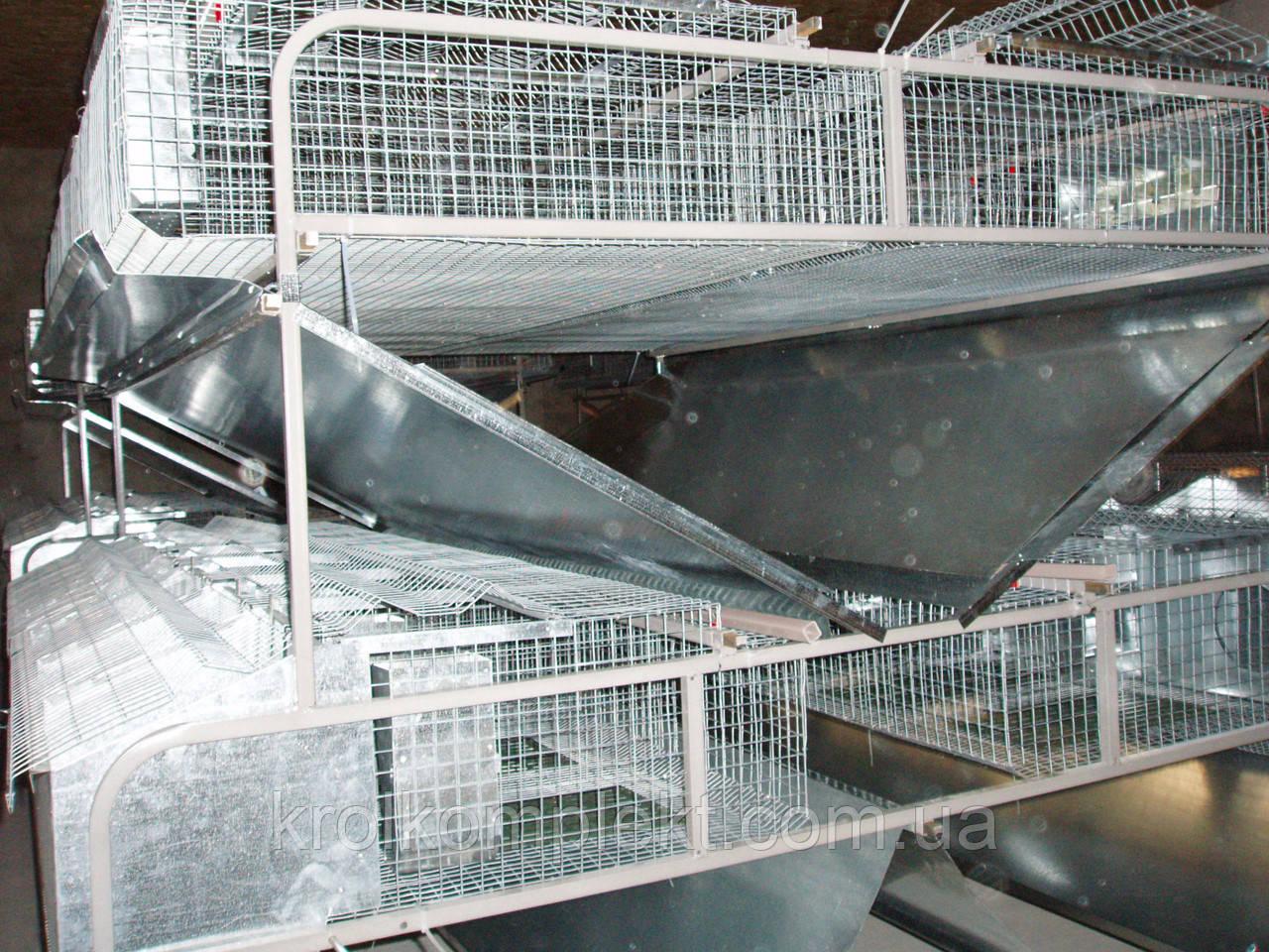 Клетка для кролей мин ферма КМО 14 ( диаметр сетки от 2 мм)