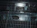 Клетка мини ферма для кролей универсальная ., фото 6