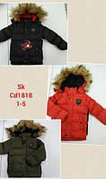 Куртка утепленная для мальчиков оптом, Setty Koop, 1-5 лет,  № СD1818