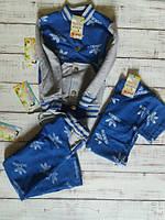 0c86d69fe98f Спортивный костюм тройка детский Адик, бантик+футболка+штаны 110 116, синий