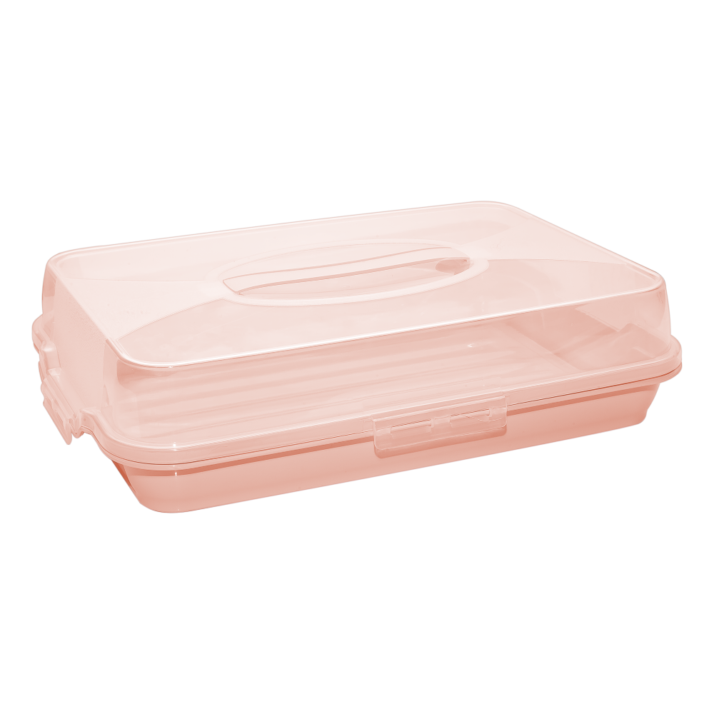 Тортовниця прямокутна помаранчева
