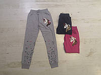 Спортивные брюки для девочек оптом, Seagull, 116-146 рр, фото 1