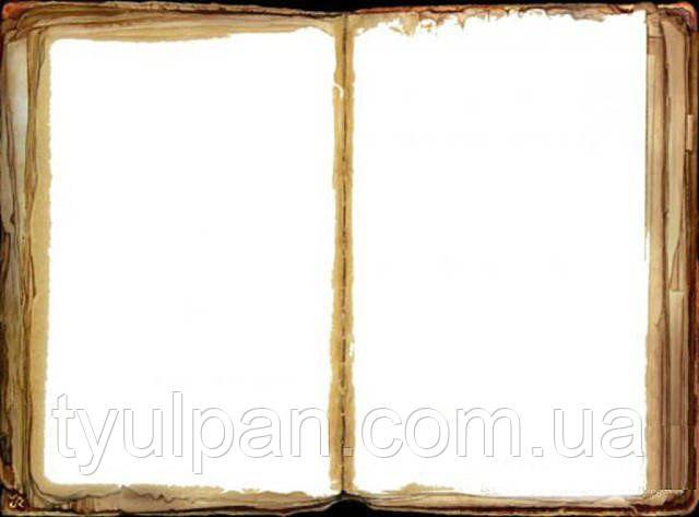 Книга Вафельная картинка