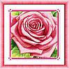 """Набор для рисования камнями (холст) """"Роза"""" LasKo TK037 (55х55 см)"""