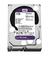 HDD диск для видеорегистратора на 1 Тб WD Purple
