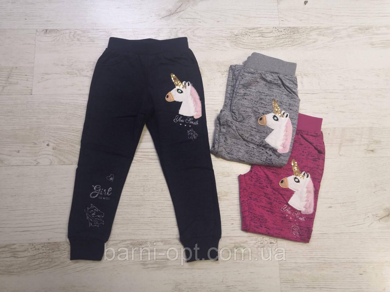 Спортивные брюки для девочек оптом, Seagull, 98-128 рр