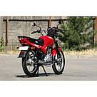 Мотоцикл BURN 150 Красный, фото 3