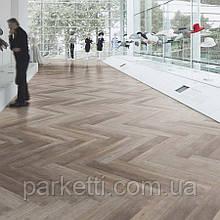 Forbo  w60356 grey autumn oak  виниловая плитка Allura Wood