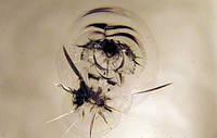 Ремонт тріщин на автосклі, фото 1