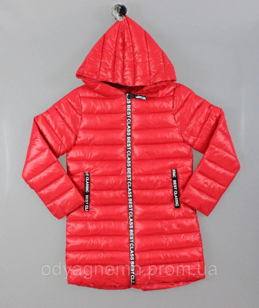 Курточка для девочек Glo-Story оптом, 110-160 рр.