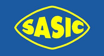 Сайлентблок рычага, передняя ось (задний) на Renault Fluence- Sasic (Франция) - SAS2254011