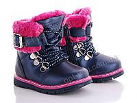 Детские зимние ботинки для девочек от бренда Clibee-apawwa (размеры 20 -25 ) 808197904bdb7