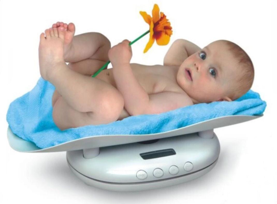 Детские весы Panda 60 кг