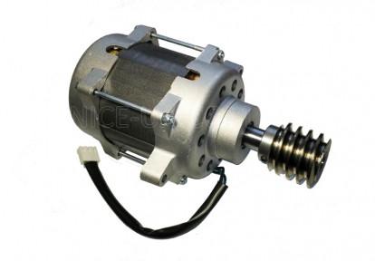 Двигатель RO500 в сборе с червяком PRRO01C