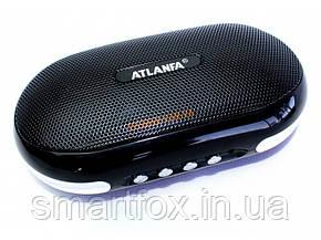 Портативная колонка ATLANFA AT-6521, фото 2