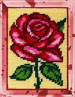 Bambini (Чарівниця)  № X-2247 Роза
