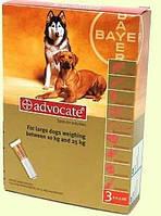 Краплі Адвокат собак 2,5мл від 10 до 25кг (1 пипетка) BAYER
