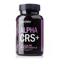 Alpha CRS+® / «Альфа СИ-АР-ЭС+» Комплекс для повышения клеточной энергии