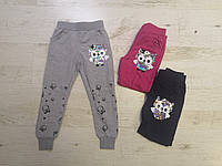 Спортивні штани для дівчаток Seagull 98-128 р. р, фото 1
