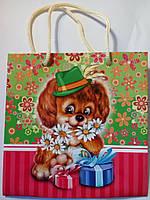 Пакет подарочный бумажный квадрат 23х24х10 (24-118)