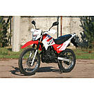 Мотоцикл SkyBike STATUS-250, фото 4