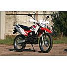 Мотоцикл SkyBike STATUS-250, фото 6