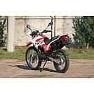 Мотоцикл SkyBike STATUS-250, фото 7