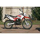 Мотоцикл SkyBike STATUS-250, фото 5