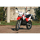 Мотоцикл SkyBike STATUS-250, фото 9