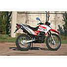 Мотоцикл SkyBike STATUS-250, фото 10