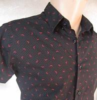 """Стильная мужская рубашка в стиле """"Армани"""""""
