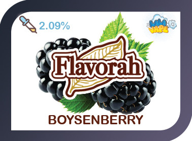 Boysenberry ароматизатор Flavorah (Бойзенова ягода)